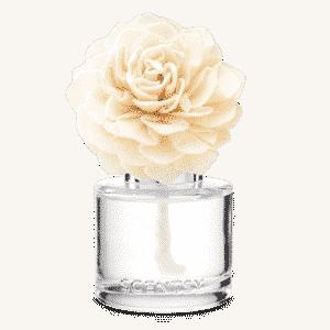 Scentsy darling dahlia fragrance flower | Mulled Cider & Spice Scentsy Fragrance Flower | Darling Dahlia