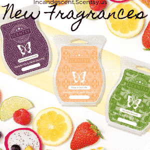 NEW SCENTSY SUMMER WAX BARS 2019