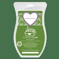 Sea Salt Avocado Scentsy Brick