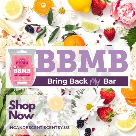 SCENTSY BRING BACK MY BAR SPRING 2020 | SHOP NOW