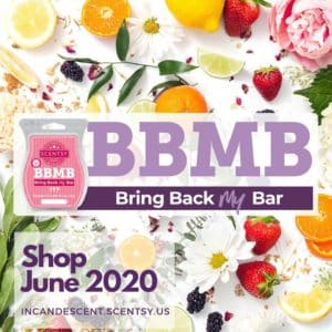 Shop June 2020 SCENTSY BRING BACK MY BAR