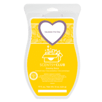 Squeeze the Day Scentsy Brick | Squeeze the Day Scentsy Brick