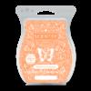 TANGERINE CREAMSICLE SCENTSY BAR | NEW! Tangerine Creamsicle Scentsy Bar | Shop Scentsy | Incandescent.Scentsy.us