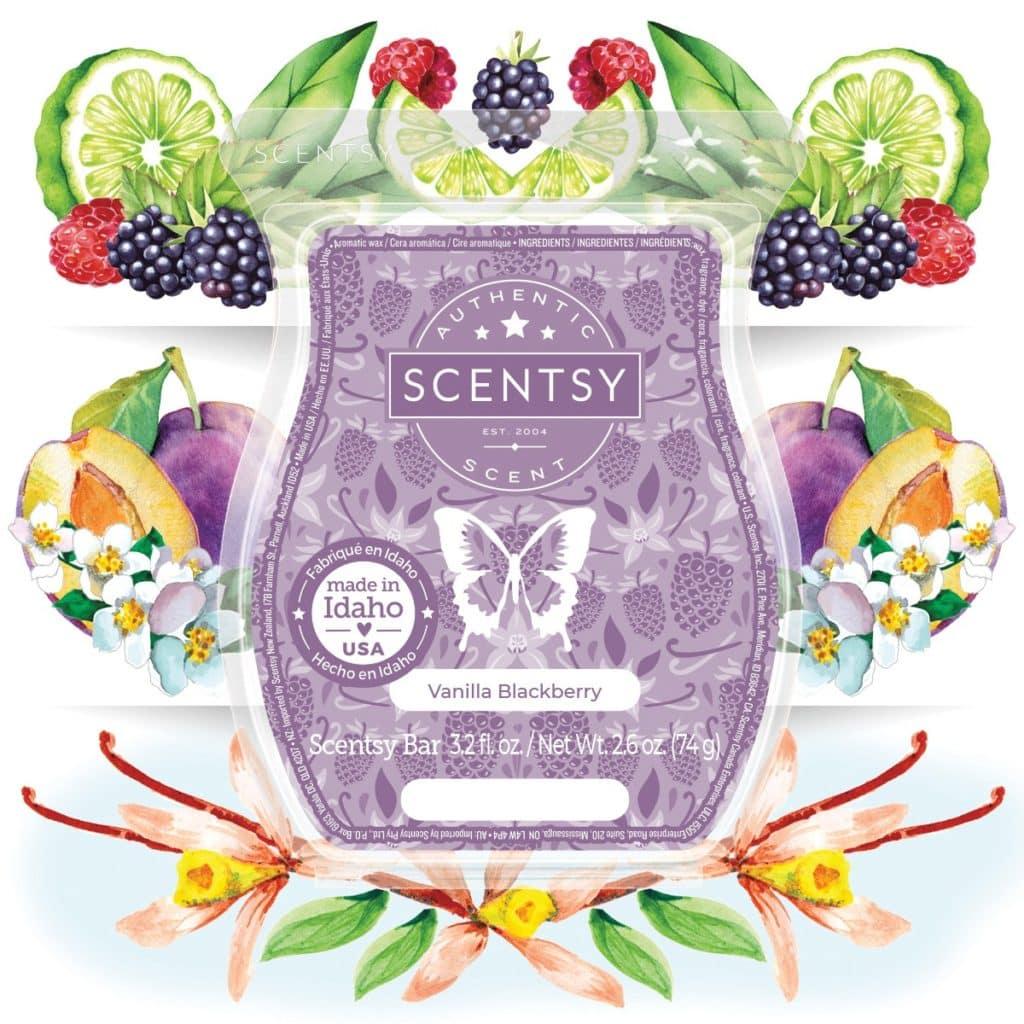 Vanilla Blackberry Scentsy Fragrance