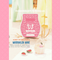 WATERMELON WAVE SCENTSY SCENT CIRCLE