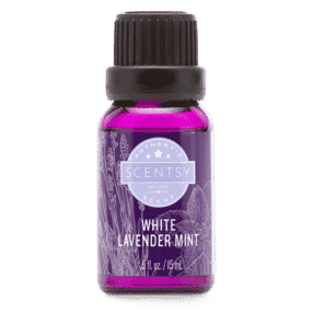 WHITE LAVENDER MINT SCENTSY OIL