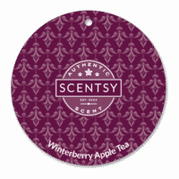 WINTERBERRY APPLE TEA SCENTSY SCENT CIRCLE