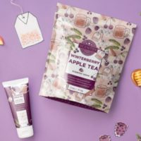 WINTERBERRY APPLE TEA SCENTSY SOAK & HAND CREAM