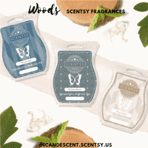 Woods Scentsy Fragrances | SCENTSY COMPLETE SCENT LIST FOR SPRING SUMMER 2019 | SCENTSY LIST OF FRAGRANCES | Scentsy® Online Store | Scentsy Warmers & Scents | Incandescent.Scentsy.us