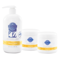 BEACH DAISY SCENTSY LAUNDRY BUNDLE