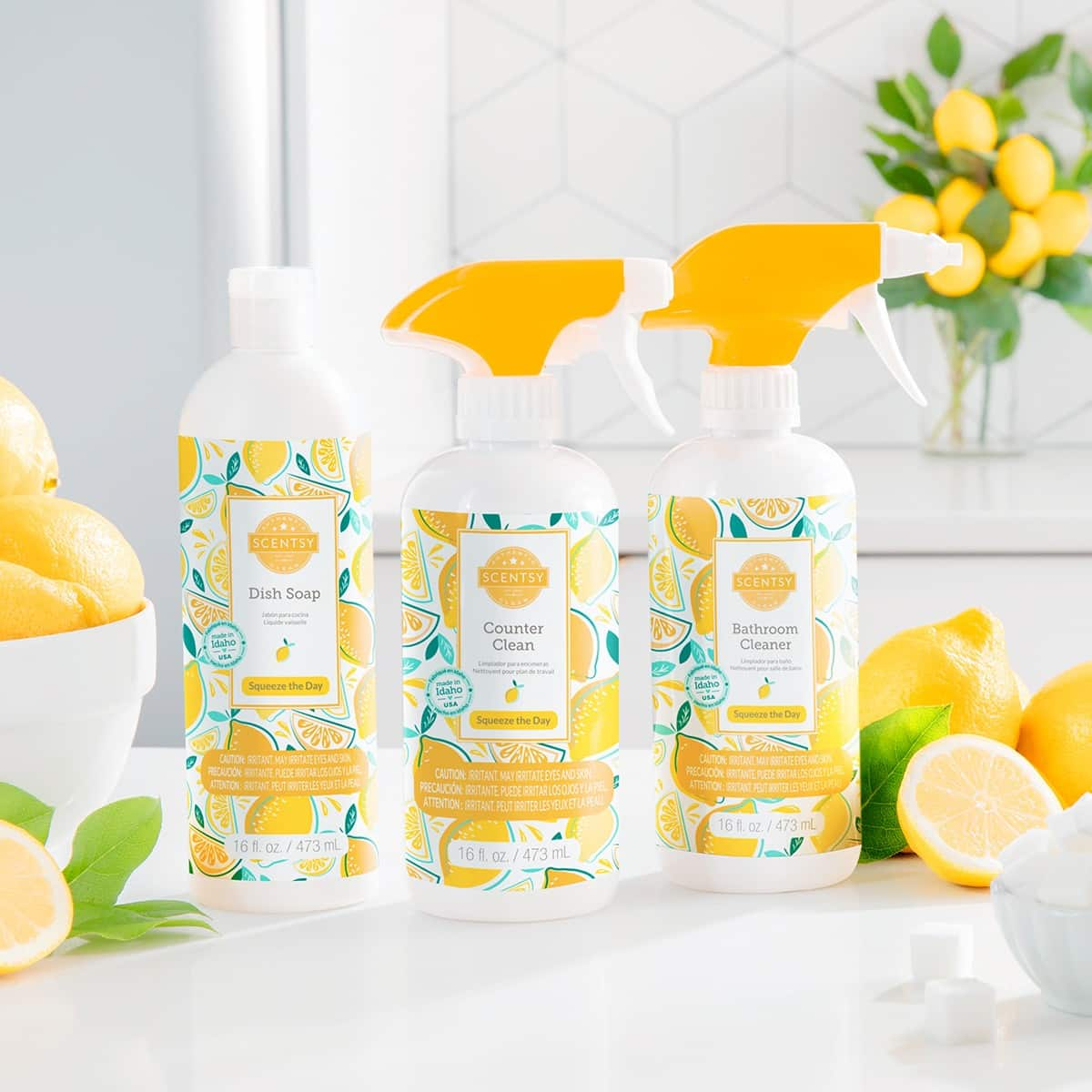 SQUEEZE THE DAY SCENTSY CLEAN BUNDLE