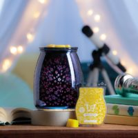 SCENTSY SUMMER NIGHT WARMER
