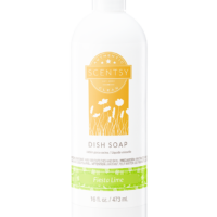 FIESTA LIME SCENTSY DISH SOAP