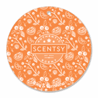 RISE AND SUNSHINE SCENTSY SCENT CIRCLE
