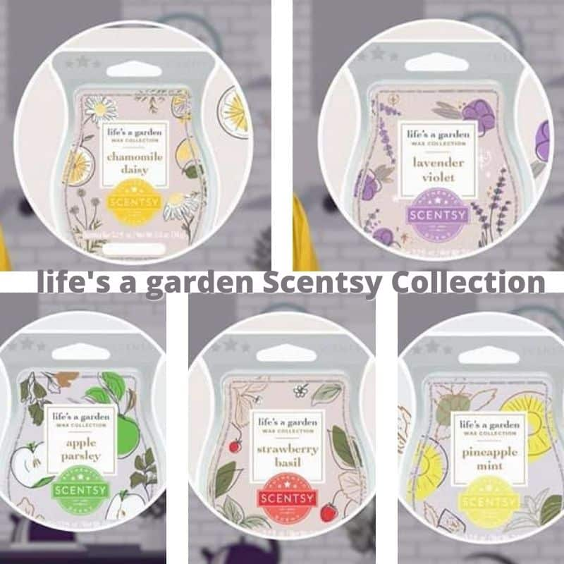 lifes a garden Scentsy Collection 1