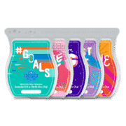 NO LIMITS SCENTSY WAX COLLECTION BUNDLE