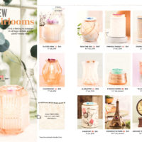 SCENTSY FALL WINTER 2018 2018 CATALOG PAGE 11