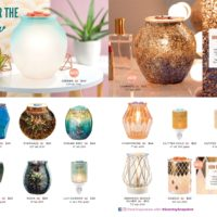 page-12   SCENTSY FALL WINTER 2019 CATALOG SLIDESHOW