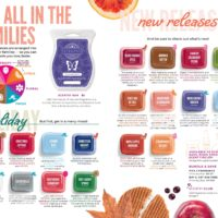 NEW SCENTSY FRAGRANCES FALL 2019