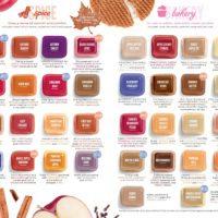 page-14   SCENTSY FALL WINTER 2019 CATALOG SLIDESHOW