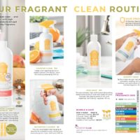 SCENTSY CLEAN FALL 2019 CATALOG