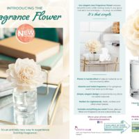 page-5   SCENTSY FALL WINTER 2019 CATALOG SLIDESHOW