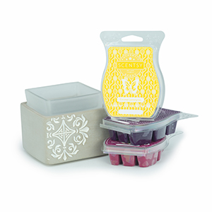how to use scentsy travel tin