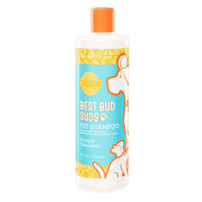 HONEY & CHAMOMILE SCENTSY PET SHAMPOO