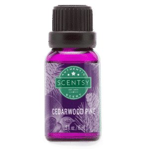 CEDARWOOD PINE SCENTSY OIL