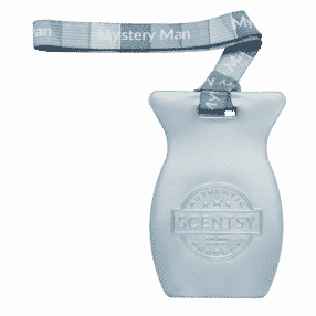 MYSTERY MAN SCENTSY CAR BAR