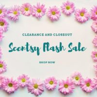 scentsy flash SALE SHOP NOW