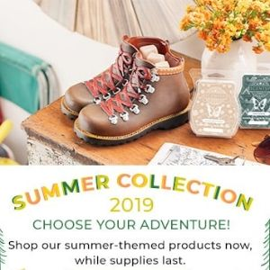 SCENTSY 2019 SUMMER COLLECTION