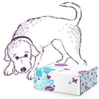 SCENTSY WOOF BOX