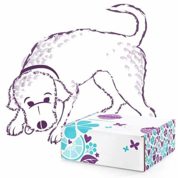SCENTSY WOOF BOX | SCENTSY WHIFF BOX